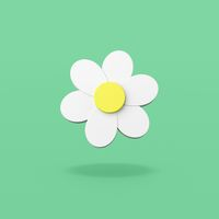 Daisy Flower Shape on Green Background