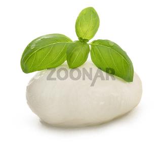 Mozzarella and basil isolated