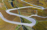 Eine serpentinenreiche Landstrasse windet sich durch die herbstlichen Rebhänge im Weinanbaugebiet Leytron