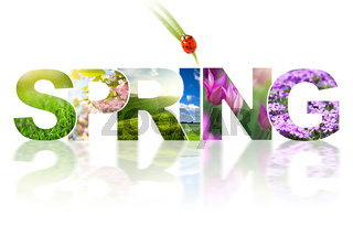 Spring word collage made of different photos isolated on white