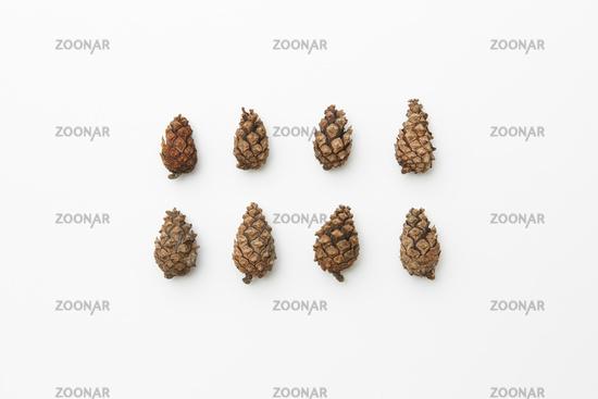 Cones in rows