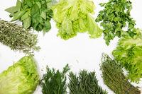 Different types of fresh garden herbs