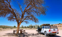 picnic spot, Kgalagadi Transfrontier National Park, South Africa