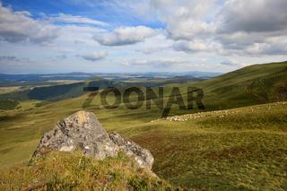 Zentralmassif im Sommer mit Schafe