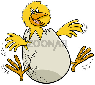 cartoon little chick hatching from egg