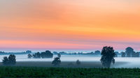 Dawn over the Donaumoos in Bavaria
