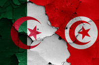flags of Algeria and Tunisia painted on cracked wall