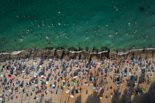 Aerial View of Crowd of People on the Beach