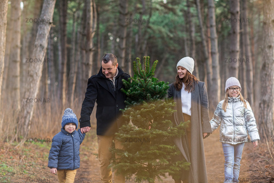 Cheerful couple with kids carrying spruce tree in woods