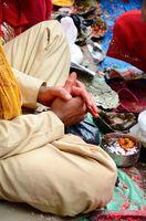 Hands of Brahmin
