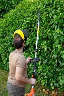 Gardener trimming hedgerow in a garden park outdoor