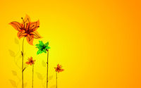 Beautiful color floral card. Sunny background.