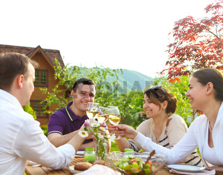 Group of happy friends toasting wine glasses in the garden