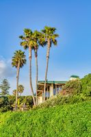 House and palm trees against sunny blue sky background in San Diego California