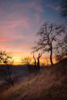 Sunset in the Bald Hills of Northern California