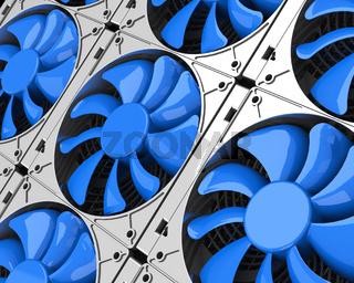 the blue fans