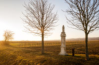 Waycross at a vineyard in Burgenland with a statue of saint rosalita