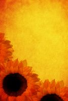 paper with sunflowers
