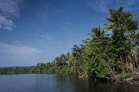 tatai river jungle nature landscape in remote cardamom mountains cambodia
