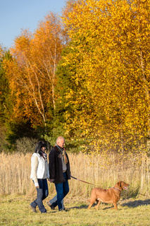 Couple walking dog in sunny autumn countryside