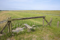Fence at the dike