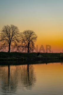 Reflexions of two trees at a river at sunset