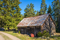 Old weathered barn by a forest road