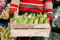 Woman holding crate of zucchini at the market