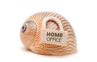 Coronavirus Home Office
