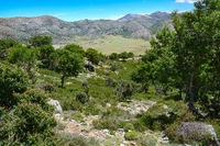 Nida plateau on the island of Crete