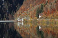 Colorful autumn landscape at the shore of Lake Wagital.