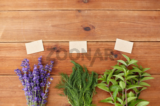 lavender, dill and peppermint on wooden background