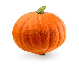 Fresh pumpkin isolated