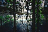 Man using swing into Oxman cenote with blue water and tropical plants in the cave, Yucatan, Mexico
