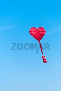 red kite in the sky