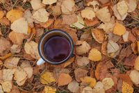 Enamel mug with hot tea on autumn golden leaves
