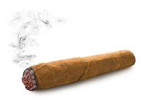 One cuban cigar