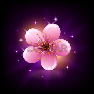 Pink sakura flower icon on dark background with sparkles, Japan cherry blossom, vector illustration.