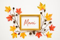 Colorful Autumn Leaf Decoration, Frame, Text Merci Means Thank You