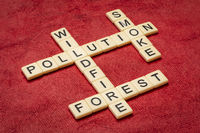 forest wildfire and smoke crossword