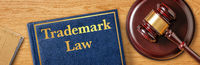 A gavel with a law book - Trademark Law