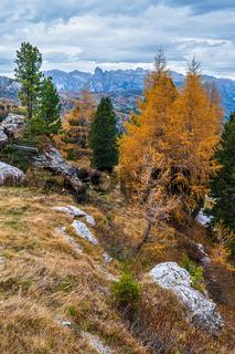 Overcast morning autumn alpine Dolomites mountain scene. Peaceful Valparola Path view, Belluno, Italy.