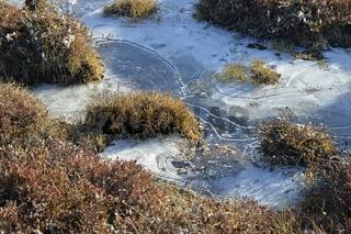 Gefrorener Bach im Herbst, Sydkap, Scoresby Sund, Ost-Grönland