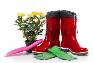 Garden tools with flower pot