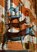 Bremen Town Musicians by Gerhard Marcks, illuminated bronze statue, Bremen, Germany, Europe