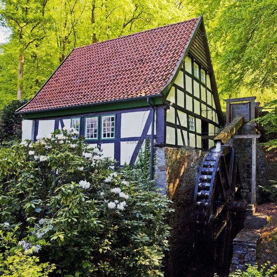 Historic water mill, Bad Essen, Lower Saxony, Germany, Europe