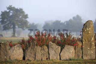 Bretonischer Garten mit kleinen Menhiren