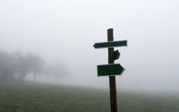 Two opposite arrows on a wooden pole with meadow and fog