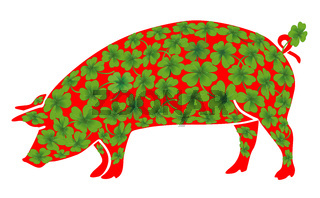 Schweine Glueck.jpg