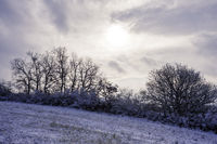 Landscape in winter in Burgenland
